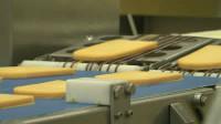 Dam pracę w Holandii od września w fabryce sera bez znajomości języka holenderskiego Woerden
