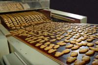 Dam pracę Holandii dla par na produkcji ciastek bez znajomości języka