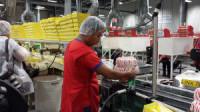 Praca w Anglii na produkcji przy pakowaniu bez języka od zaraz Sheffield