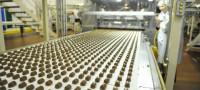 Dam pracę w Danii dla kobiet bez języka na produkcji czekolady Holmegaard