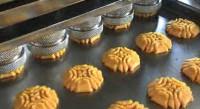 Niemcy praca na produkcji ciastek bez znajomości języka Berlin od zaraz
