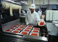 Oferta pracy w Anglii od zaraz na produkcji mięsnej bez języka Llanelli