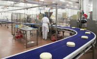 Praca Niemcy w Berlinie bez języka na produkcji spożywczej do stycznia 2015
