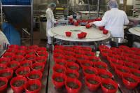 Bez znajomości języka praca Anglia od zaraz produkcja deserów Manchester