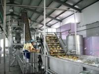 Praca w Niemczech od zaraz pakowanie owoców dla par bez języka Bremen