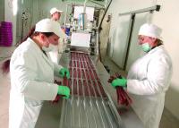 Praca Holandia na produkcji spożywczej bez języka od zaraz Amsterdam