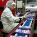fabryka-czekolady2