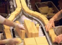 Oferta pracy w Wielkiej Brytanii na produkcji przy pakowaniu nabiału Conwy
