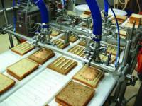 Bez języka oferta pracy w Holandii na produkcji pakowanie kanapek Tilburg