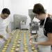 produkcja-przekasek-ciastka