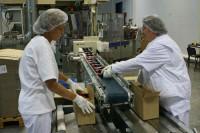 Praca Holandia przy pakowaniu produktów na produkcji dla kobiet bez języka