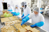 Niemcy praca w Berlinie pakowanie kanapek bez znajomości języka dla par