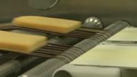 Praca w Holandii na produkcji przy pakowaniu serów Tilburg bez języka