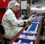 Praca w Anglii kobiety pakowanie czekolad od zaraz produkcja Birmingham