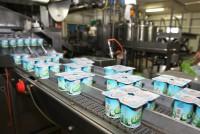 Produkcja jogurtów praca Niemcy od zaraz bez znajomości języka Duisburg