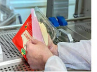 Oferta pracy w Niemczech dla par bez języka pakowanie sera Drezno