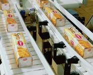 Oferta pracy w Holandii bez znajomości języka pakowanie słodyczy Oss