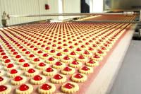 Laurencekirk praca Anglia bez znajomości języka pakowanie, produkcja ciasta