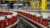 Niemcy praca bez znajomości języka od zaraz na produkcji keczupu Berlin