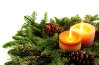 Holandia praca produkcja stroików świątecznych Haga bez języka