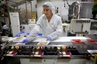 Od zaraz Holandia praca Oude Tonge na produkcji spożywczej bez języka przygotowywanie składników