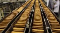 Praca w Holandii w piekarni dla par pakowanie ciastek Zwolle bez języka