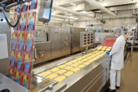 Praca w Holandii na produkcji pakowanie serów bez znajomości języka Almere