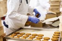 Holandia praca dla kobiet, par pakowanie ciastek od zaraz bez języka Bunschoten
