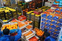 Od zaraz ogłoszenie pracy w Szwecji bez języka pakowanie owoców Norrköping