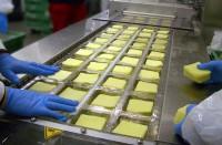 Od zaraz pakowanie sera krojonego praca w Anglii bez języka Liverpool UK
