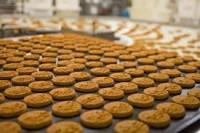 Ogłoszenie pracy w Holandii bez języka przy pakowaniu ciastek Eindhoven