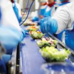 Niemcy praca bez języka przy produkcji sałatek owocowo-warzywnych Schwalmtal