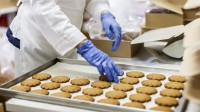 Od zaraz praca Holandia bez języka dla kobiet i par produkcja ciastek Bunschoten
