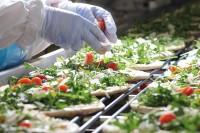 Produkcja kanapek oferta pracy w Anglii od zaraz bez języka Leeds UK