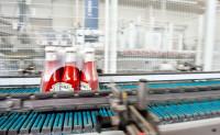 Holandia praca bez znajomości języka Wijchen od zaraz przy pakowaniu keczupów