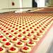 produkcja-ciastek-tasma-produkcyjna (2)