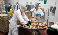 Ogłoszenie pracy w Holandii bez języka pakowanie żywności od zaraz Oude Tonge