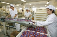 Oslo Norwegia praca bez znajomości języka pakowanie słodyczy od zaraz