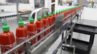 Od zaraz oferta pracy w Holandii 2017 na produkcji sosów w fabryce Udenhout