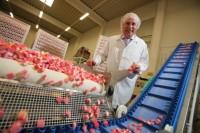 Praca Holandia bez znajomości języka produkcja słodyczy od zaraz 2017 Roosendaal