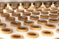 Od zaraz praca Holandia 2017 bez znajomości języka produkcja ciastek, pizzy Amersfoort