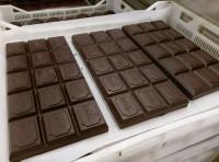 Oferta pracy w Holandii od zaraz pakowanie czekolady bez języka Zwolle
