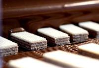 Dam pracę w Holandii od zaraz na produkcji wafelków, ciastek bez języka Nieuwkuijk