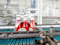 Niemcy praca bez znajomości języka przy pakowaniu keczupów od zaraz Berlin