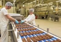 Od zaraz dam pracę w Holandii 2017 na produkcji ciastek, wafli z językiem angielskim, Nieuwkuijk