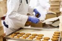 Od zaraz dam pracę w Holandii przy pakowaniu ciastek w Harderwijk