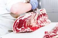 Wykrawacz wołowy – Norwegia praca bez języka na produkcji, Drammen