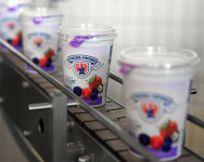 Od zaraz praca w Holandii na produkcji jogurtów typu greckiego, Limburgia 2018