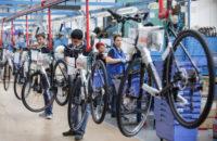 Dam pracę w Holandii bez języka na produkcji rowerów od zaraz Herten