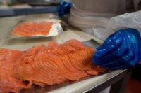 Praca Szkocja na produkcji łososia w fabryce z Stornoway UK 2018